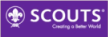 Logo der World Organization of the Scout Movement